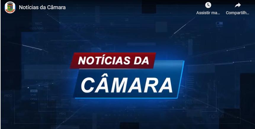 Pronunciamento da conselheira da Fundaes Ana Rita Nico na Câmara Municipal de Linhares